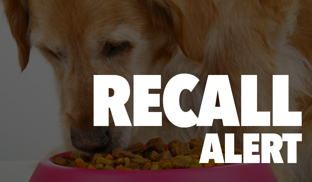 Pets News